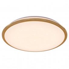 Потолочный светодиодный светильник Citilux Старлайт CL70362