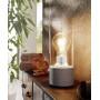 Настольная лампа декоративная Torvisco 1 94549